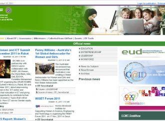 Coordinación del Grupo de Trabajo Internacional Mujeres y TIC (ITF) de  UN GAID