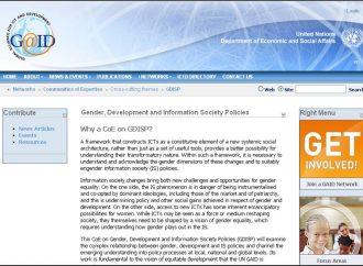"""Comunidad de experticia """"Gender, Development and Information Society Policies"""" del UN GAID, Naciones Unidas."""